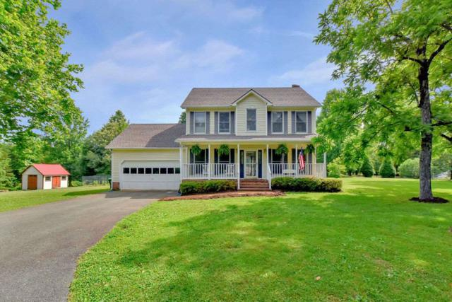 36 Paynes Mill Rd, TROY, VA 22974 (MLS #591924) :: Jamie White Real Estate