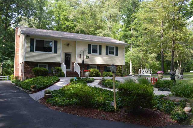 29373 Mine Run Rd, Unionville, VA 22567 (MLS #591976) :: Jamie White Real Estate