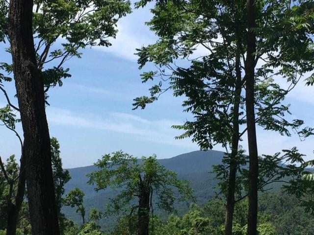 Lot 2 Howardsville Tpke #2, AFTON, VA 22920 (MLS #592127) :: Real Estate III