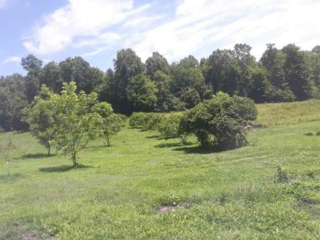 3174 Yanceyville Rd, LOUISA, VA 23093 (MLS #592164) :: Real Estate III