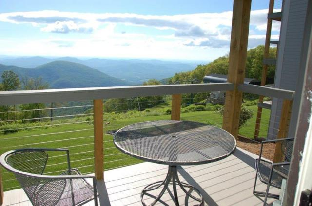 1419 Highlands Condos, WINTERGREEN, VA 22958 (MLS #592247) :: Real Estate III