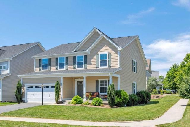 5535 Summerdean Rd, Crozet, VA 22932 (MLS #592544) :: Real Estate III