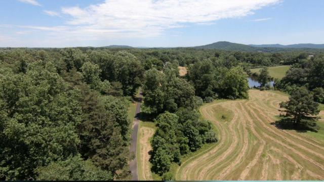 511 Shelton Mill Rd, CHARLOTTESVILLE, VA 22903 (MLS #592751) :: Real Estate III