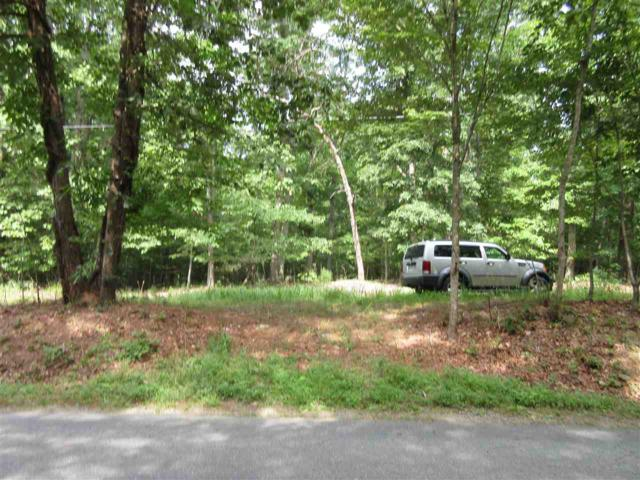 Paynes Mill Rd, TROY, VA 22974 (MLS #593019) :: Real Estate III