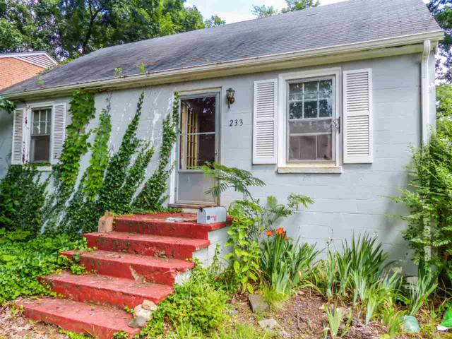 233 Stribling Ave, CHARLOTTESVILLE, VA 22903 (MLS #593220) :: Real Estate III