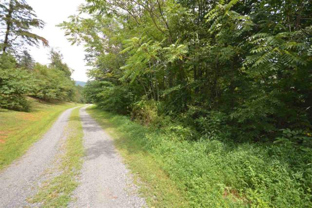 Hideaway Trl C3, STANARDSVILLE, VA 22973 (MLS #593998) :: Jamie White Real Estate