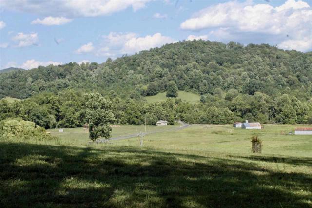 7000 Blackwells Hollow Rd, Crozet, VA 22932 (MLS #594218) :: Real Estate III