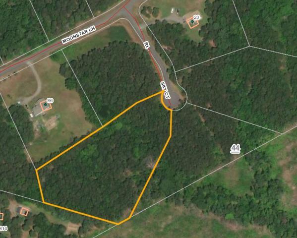 20 Sky Ct, COLUMBIA, VA 23038 (MLS #594299) :: Jamie White Real Estate