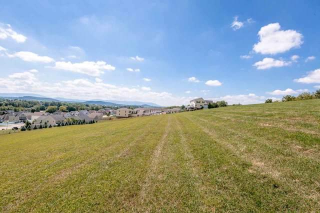 126 Barren Ridge Rd #126, Fishersville, VA 22939 (MLS #595101) :: KK Homes