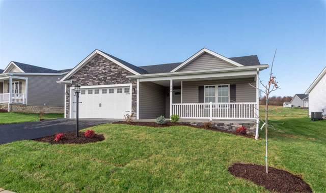 229 Spring Run Ln, WAYNESBORO, VA 22980 (MLS #595470) :: Jamie White Real Estate