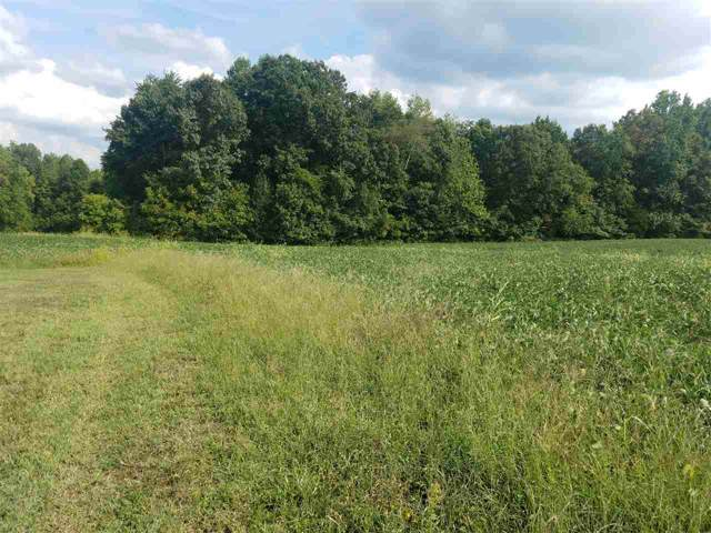800 Welshman Ln, MINERAL, VA 23117 (MLS #595643) :: Real Estate III