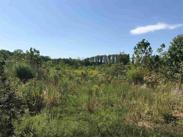 0 Old Apple Grove Rd, MINERAL, VA 23117 (MLS #595717) :: Real Estate III