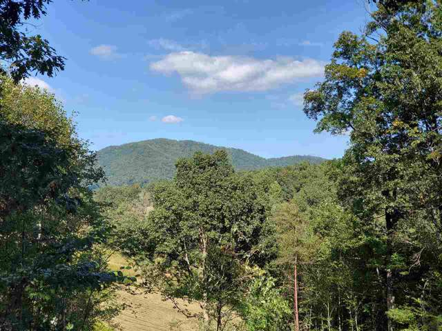 332 Berry Hill Rd D, FABER, VA 22938 (MLS #595780) :: Jamie White Real Estate