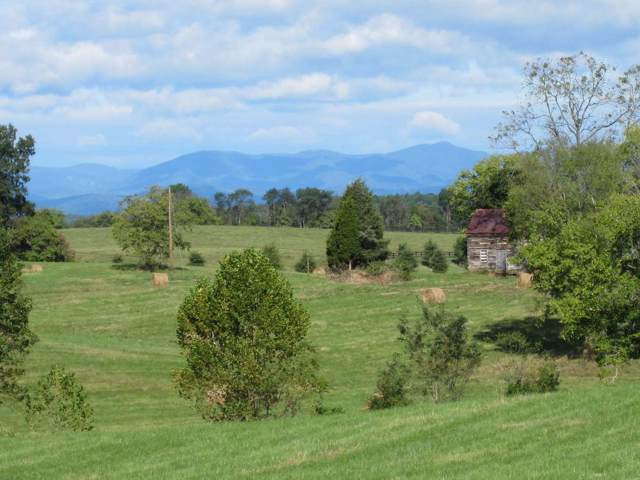 13064 Constitution Hwy, ORANGE, VA 22960 (MLS #595849) :: Jamie White Real Estate