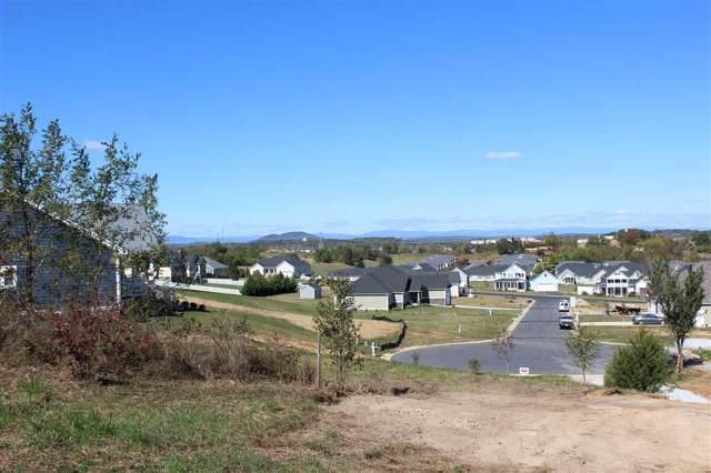 Lot 47 Silver Maple Cove, Fishersville, VA 22939 (MLS #596209) :: KK Homes
