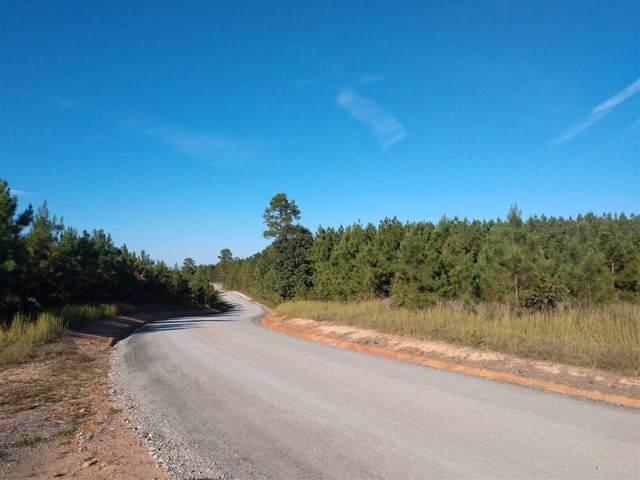 3B Middle Fork Rd, Palmyra, VA 22963 (MLS #596492) :: Jamie White Real Estate