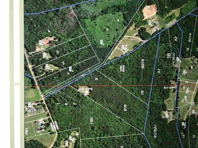 0 Gardners Rd, MINERAL, VA 23117 (MLS #596594) :: Jamie White Real Estate