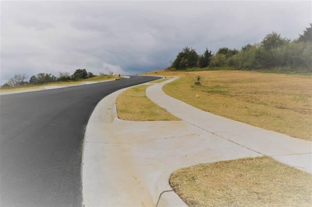 tbd70 Chamberlain Dr #70, STAUNTON, VA 24401 (MLS #596675) :: Real Estate III