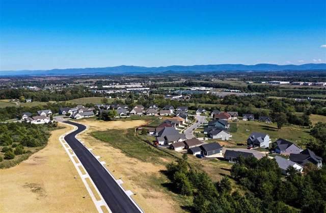 tbd90 Chamberlain Dr #90, STAUNTON, VA 24401 (MLS #596699) :: Jamie White Real Estate