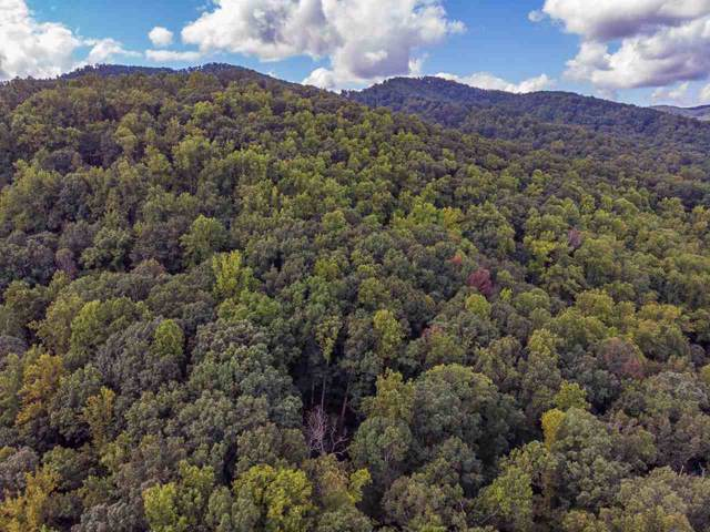Turkey Ln 1W, FABER, VA 22938 (MLS #596718) :: Real Estate III