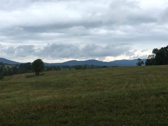 D2 Edge Valley Rd D2, North Garden, VA 22959 (MLS #596735) :: Real Estate III
