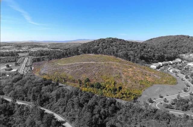 206 Frontier Dr, STAUNTON, VA 24401 (MLS #596899) :: Jamie White Real Estate