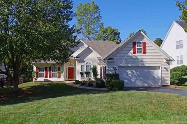 970 Charter Oaks Dr, CHARLOTTESVILLE, VA 22901 (MLS #597523) :: Real Estate III