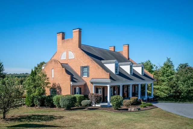 1395 Courtney Ln, ELKTON, VA 22827 (MLS #597669) :: Jamie White Real Estate