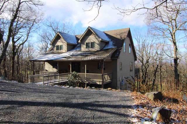 166 South Forest Dr, Wintergreen Resort, VA 22967 (MLS #597700) :: Jamie White Real Estate