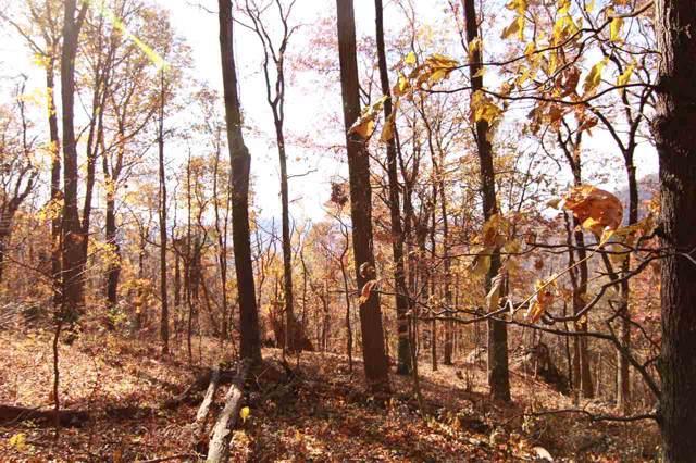 521 Far Knob Climb, Nellysford, VA 22958 (MLS #597701) :: Jamie White Real Estate