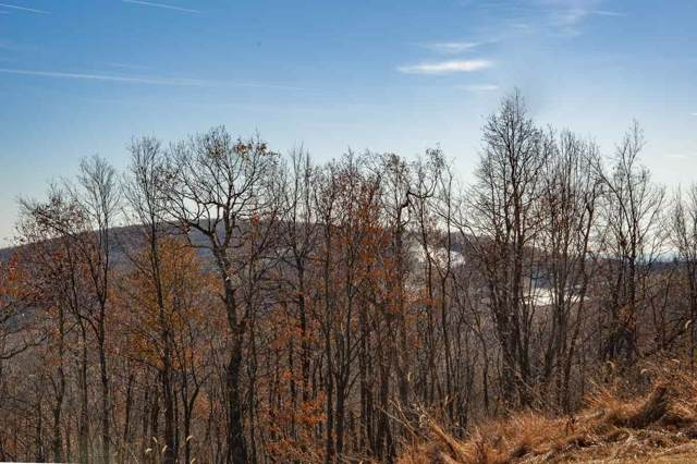 1719 High Ridge Condos, Wintergreen Resort, VA 22967 (MLS #597873) :: Real Estate III