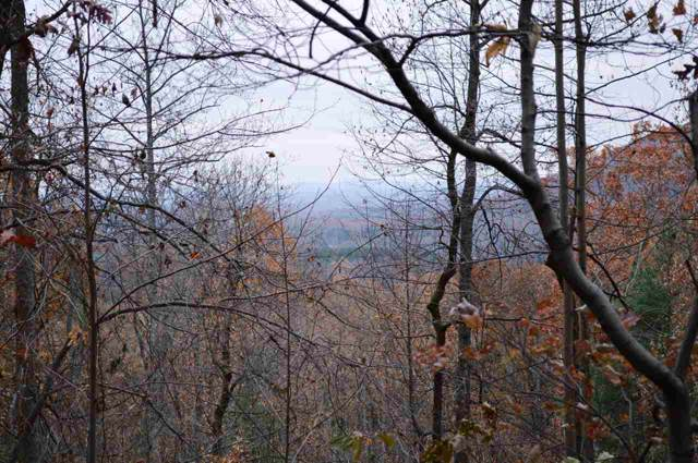 0 High Ridge Rd #24, STANARDSVILLE, VA 22973 (MLS #598018) :: Jamie White Real Estate