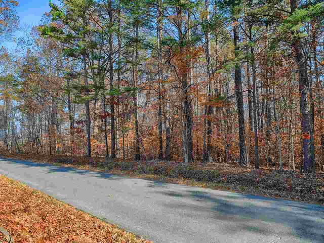 TBD-1 Moore Rd, RUCKERSVILLE, VA 22968 (MLS #598057) :: Jamie White Real Estate