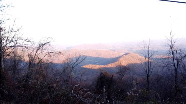 Lot 35 Flattop Mountain Rd #35, FREE UNION, VA 22940 (MLS #598081) :: Jamie White Real Estate