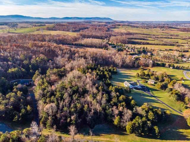 TBD Hermitage Estates Rd, WAYNESBORO, VA 22980 (MLS #598092) :: Jamie White Real Estate