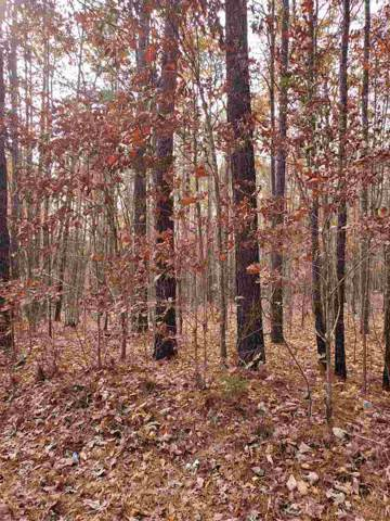 0 Scotts Bottom Rd, Dillwyn, VA 23936 (MLS #598111) :: Jamie White Real Estate