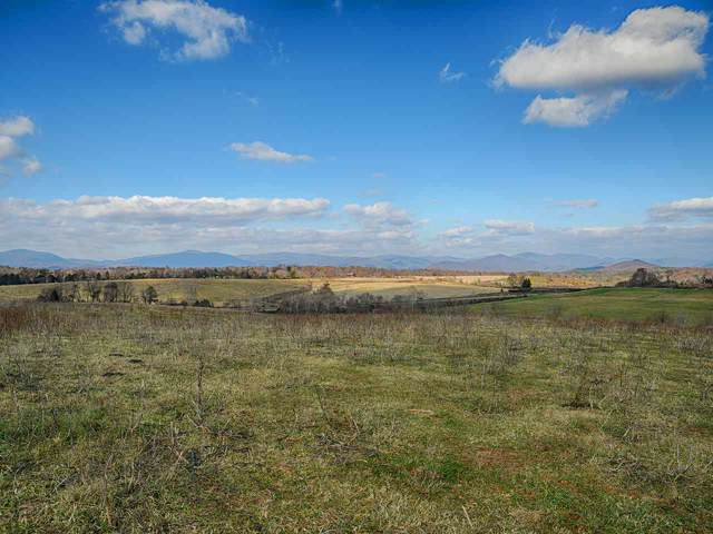 tbd-2 Moore Rd, RUCKERSVILLE, VA 22968 (MLS #598161) :: Jamie White Real Estate