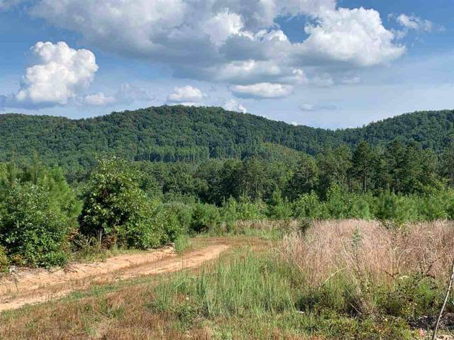 0 W Pounding Creek Rd, CHARLOTTESVILLE, VA 22903 (MLS #598286) :: Real Estate III