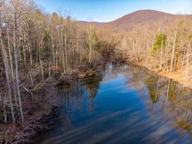 156 Hidden Creek Rd, Nellysford, VA 22958 (MLS #598295) :: Real Estate III