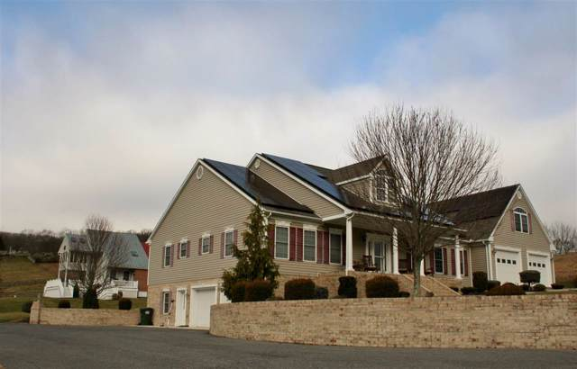 125 Golden Rod Ln, Monterey, VA 24465 (MLS #598586) :: KK Homes