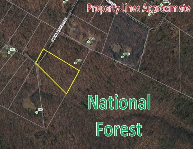 0 Independence Ln, New Market, VA 22844 (MLS #599122) :: Jamie White Real Estate