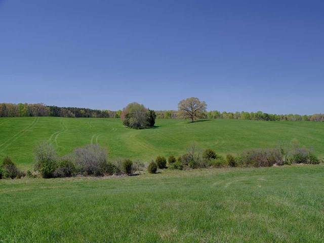 TBD Vawter Corner Rd, LOUISA, VA 23093 (MLS #599248) :: Jamie White Real Estate