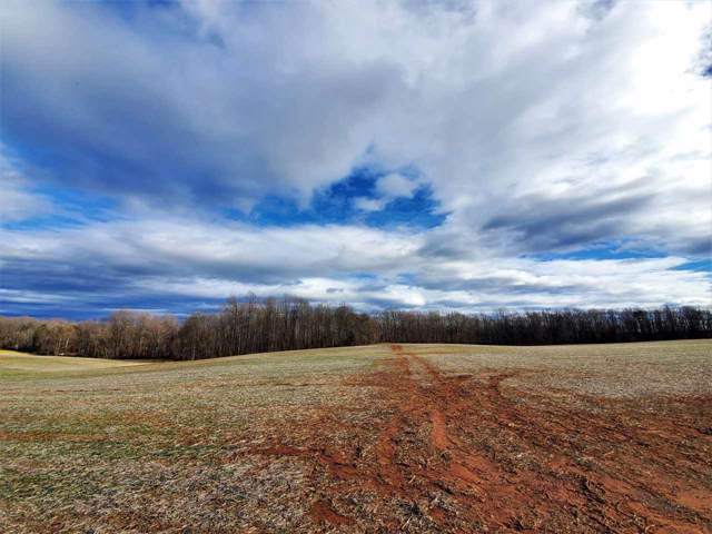 0 Moore Rd, RUCKERSVILLE, VA 22968 (MLS #599456) :: Jamie White Real Estate