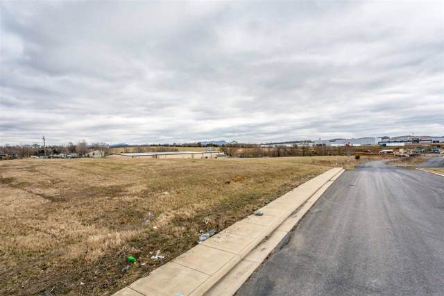 16 E Kaylor Park Dr, HARRISONBURG, VA 22801 (MLS #599586) :: Jamie White Real Estate