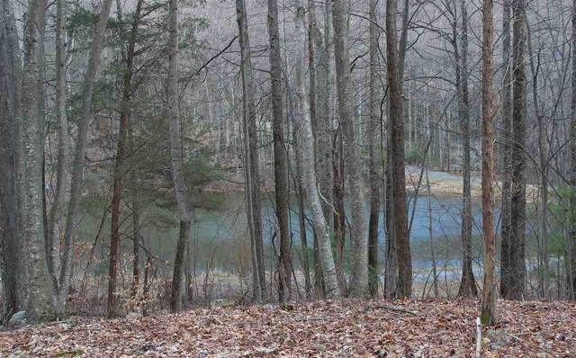 0 Lakeview Rd, Madison, VA 22727 (MLS #599931) :: Real Estate III