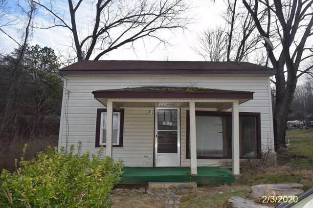 117 Richardson Ave, WAYNESBORO, VA 22980 (MLS #600022) :: Real Estate III