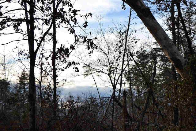 Lot 30 Springbranch Trl #30, STANARDSVILLE, VA 22973 (MLS #600137) :: Jamie White Real Estate
