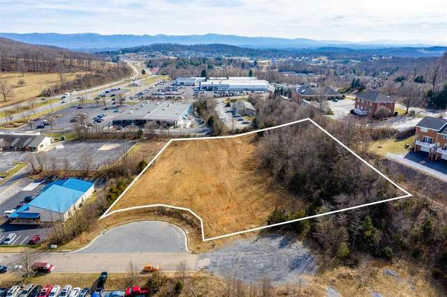 91 Betts Ct, HARRISONBURG, VA 22801 (MLS #600190) :: Jamie White Real Estate