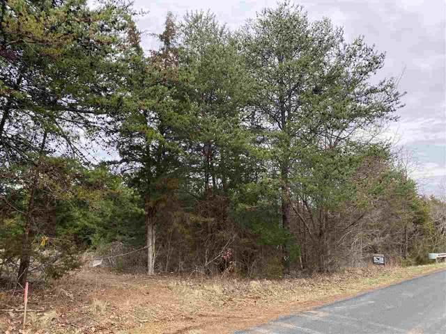 00 Shelton Store Rd, WINGINA, VA 24599 (MLS #600208) :: Jamie White Real Estate