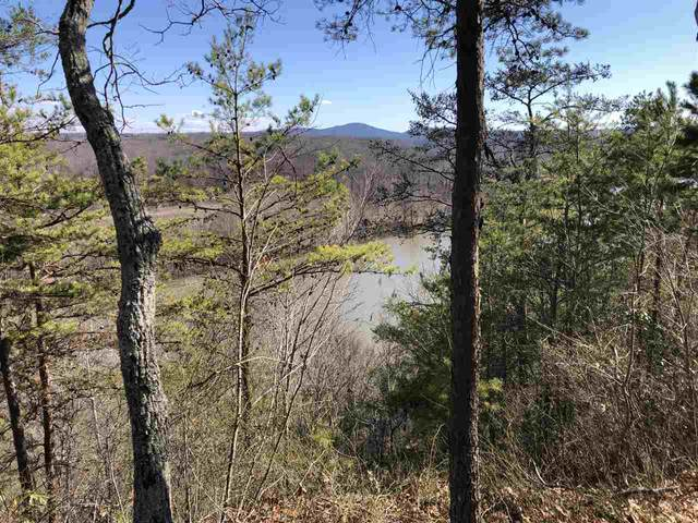 TBD Norwood Rd, NORWOOD, VA 24581 (MLS #600252) :: Jamie White Real Estate
